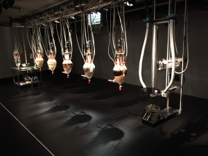A machine/sculpture that eats, digests, and poops food at MONA in Hobart